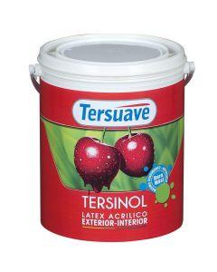 TERSUAVE TERSINOL INT-EXT  4 L