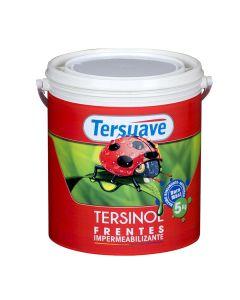 TERSUAVE TERSINOL FRENTES 25 Kg